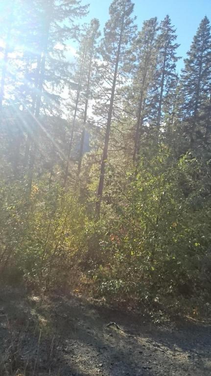 18295 Nason Creek Rd.,, Leavenworth, WA 98826