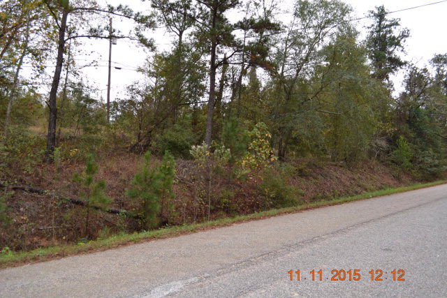 0 WRIGHT RD, Phenix City, AL 36869