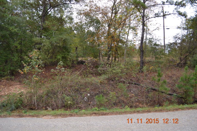 0 WRIGHT ROAD, Phenix City, AL 36869