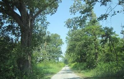 0 Us Highway 51, Desoto, IL 62924