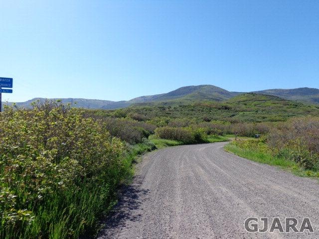 TBD 60 3/4 Road, Collbran, CO 81624
