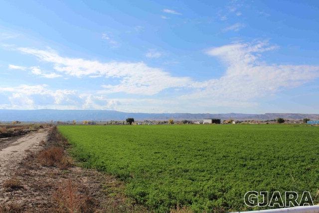 1339 Q Road, Loma, CO 81524