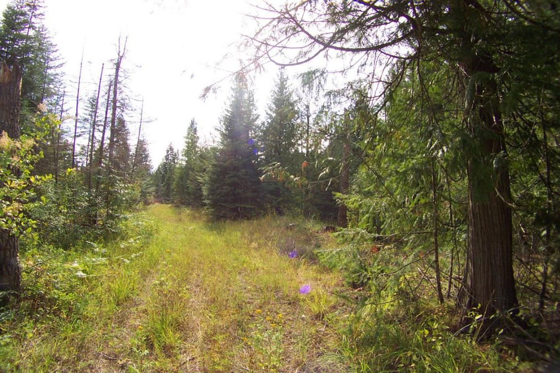 1180 HWY 57, Priest River, ID 83856