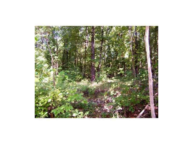 Tract 22 Rd, Powell, MO 65730
