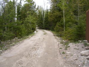 Lot 5 & 6, Three Mile Rd, Hessel, MI 49745