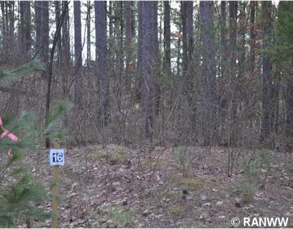 Lot 16  Whispering Pines St, Prairie Farm, WI 54762