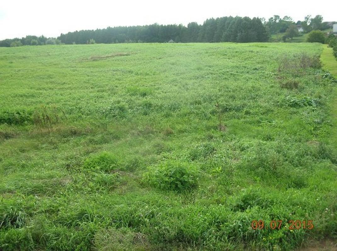 Lot 2 CLEVELAND HEIGHTS, Stratford, WI 54449