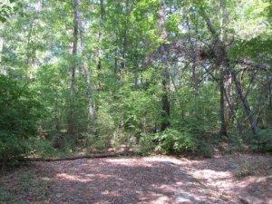 6707 Hunters Glen Drive, Knoxville, TN 37921