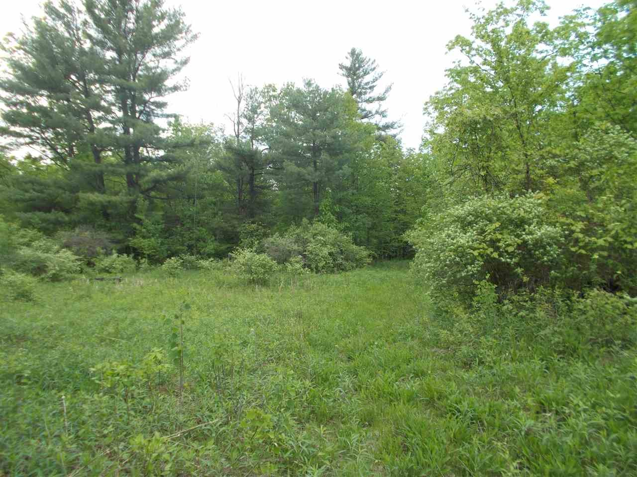 0 ENNIS RD, Princetown, NY 12137