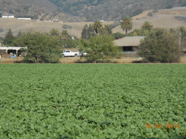 000 Pacheco Pass Hwy, Gilroy, CA 95020