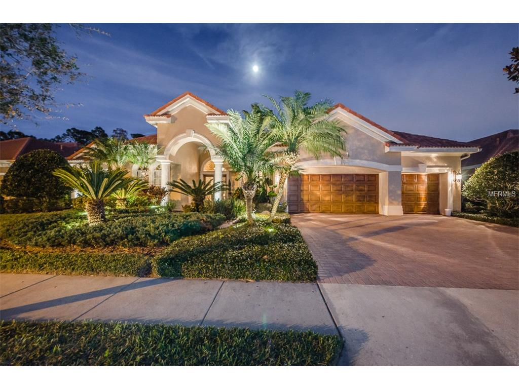 10003 Tree Tops Lake  Rd, Tampa, FL 33626