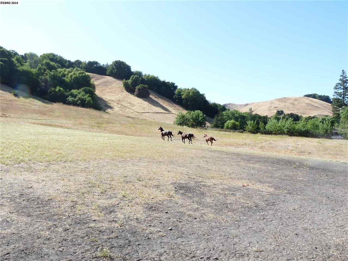 8928 Crow Canyon Rd, Castro Valley, CA 94552
