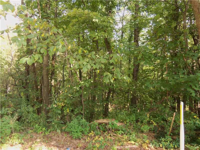 Lot 38, Marion Twp - But, PA 16038