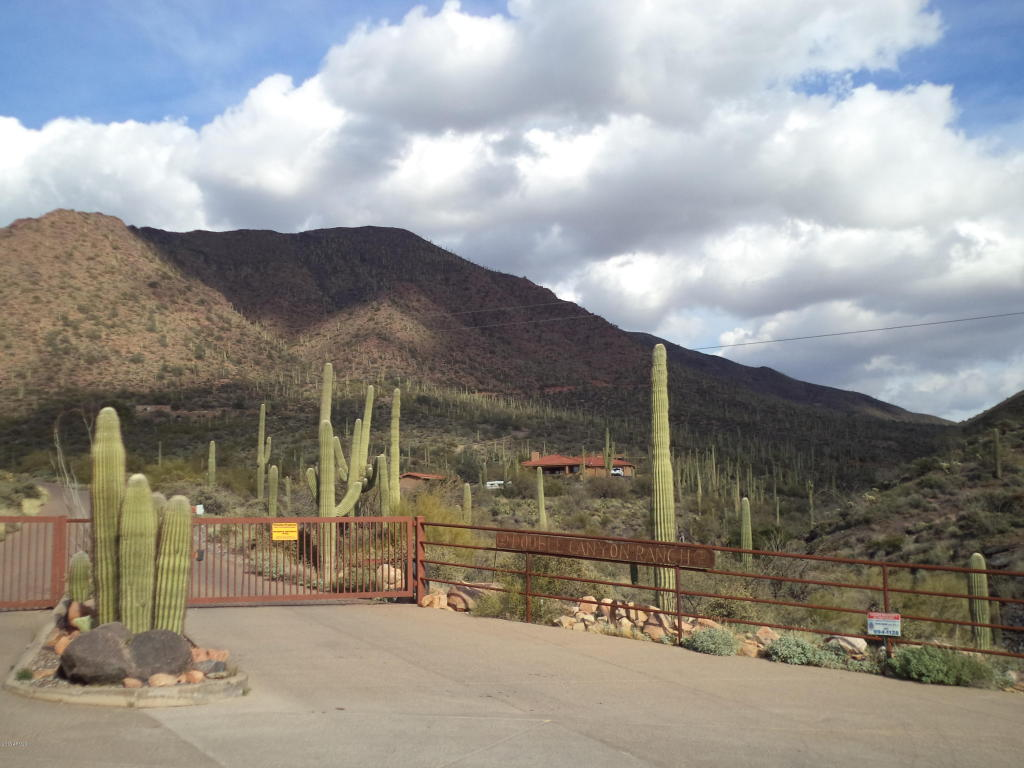 43112 N 79 Street, Cave Creek, AZ 85331