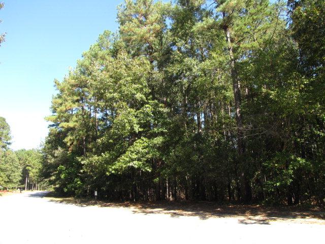 1040 Brightwood Drive, Aiken, SC 29803