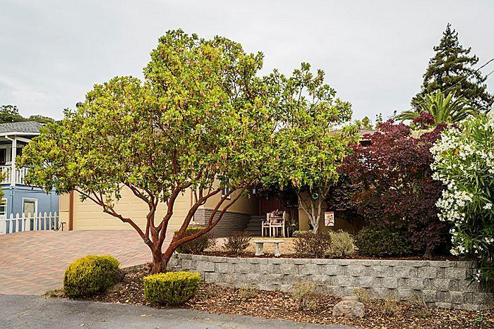 1608 Francis Ave, Belmont, CA 94002