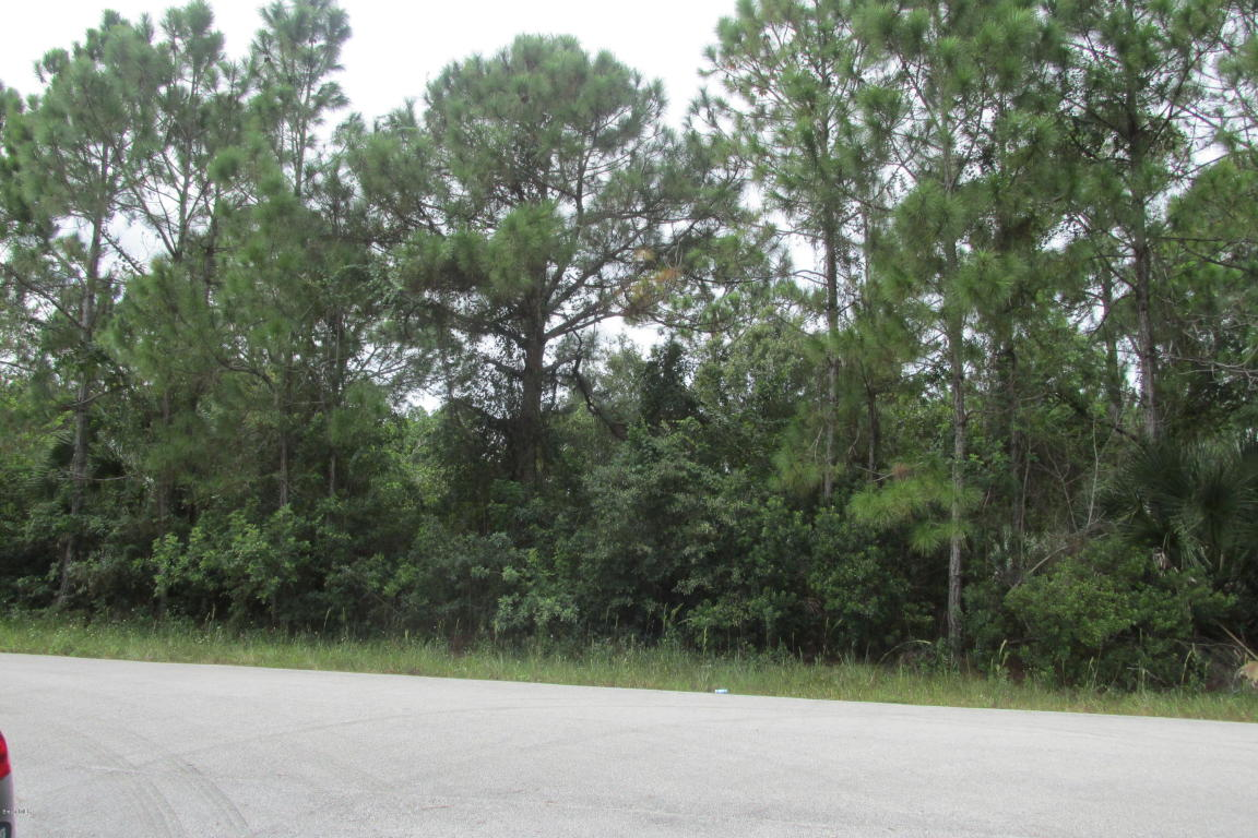 2160 SE Tea Avenue, Palm Bay, FL 32909