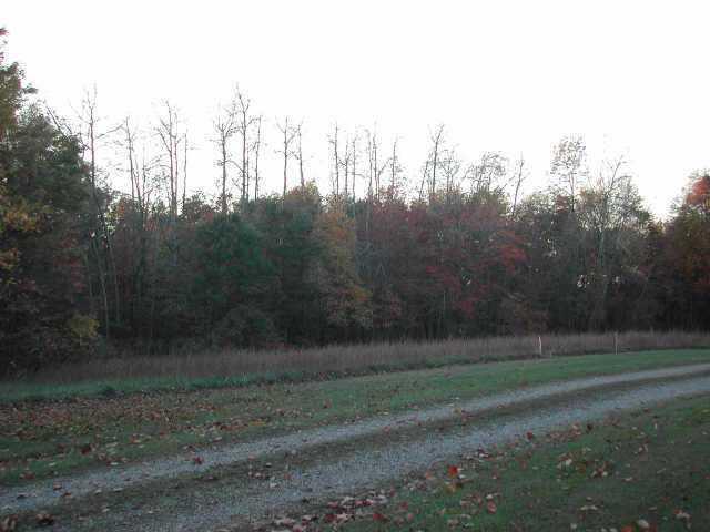0 Borah Hill Road, Sugar Grove, OH 43155