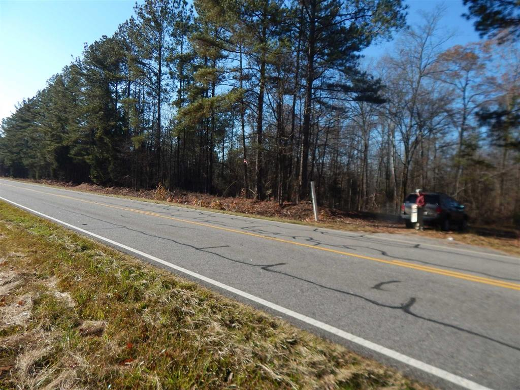 0 BROAD RIVER ROAD Tract C, Chapin, SC 29036