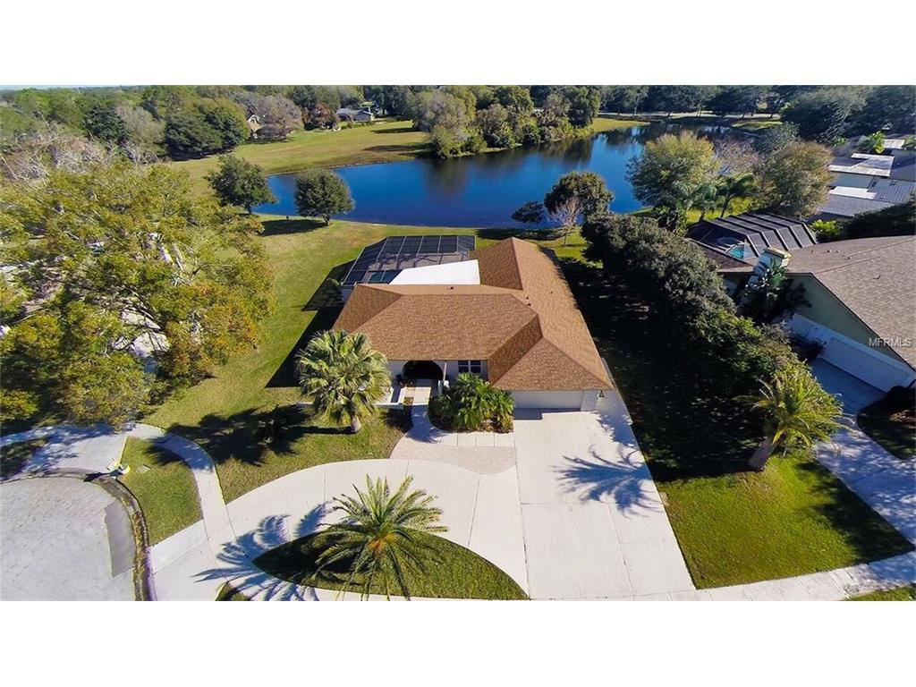 14019  Lake Bluff Ct, Tampa, FL 33624