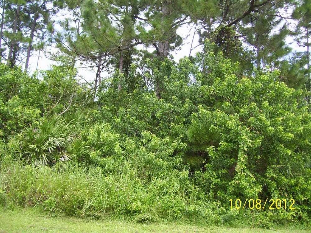 2349 SW Almansa Avenue, Port Saint Lucie, FL 34953