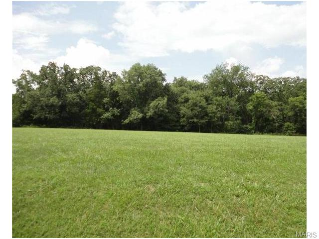 32 Lot Bridle Path Estates, Festus, MO 63028