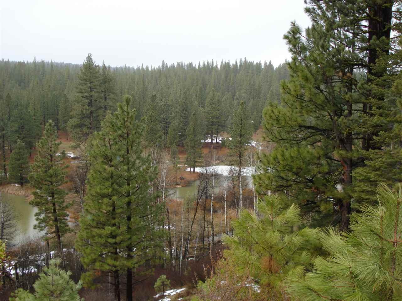 368 Smith Creek Road, Graeagle, CA 96103