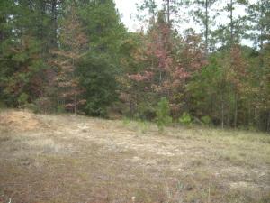 Arthur Frusha Rd, Tract 3, New Llano, Louisiana 71461