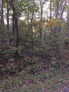 Lot West Farm Rd, Nancy, Kentucky 42544