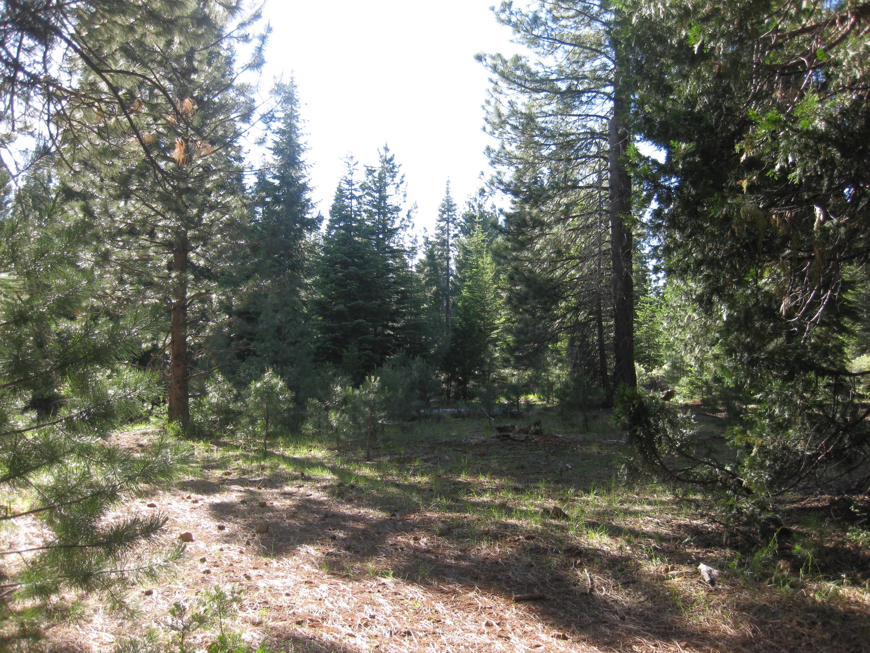 200 Lakeview Drive, Lake Almanor, California 96137