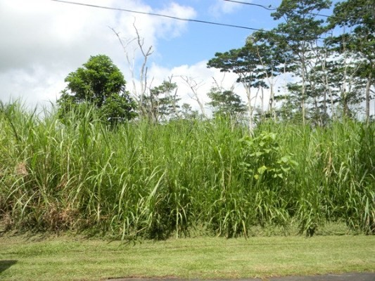Lot 257, Pahoa, Hawaii 96778