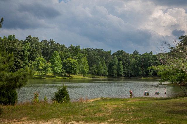 835 Snowdown Rd, Cherokee, Alabama 35616