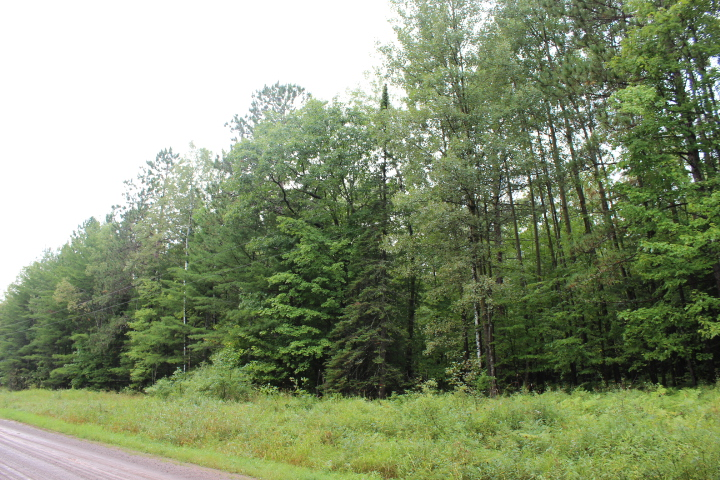 XXX Lenawee Rd, Herbster, Wisconsin 54844