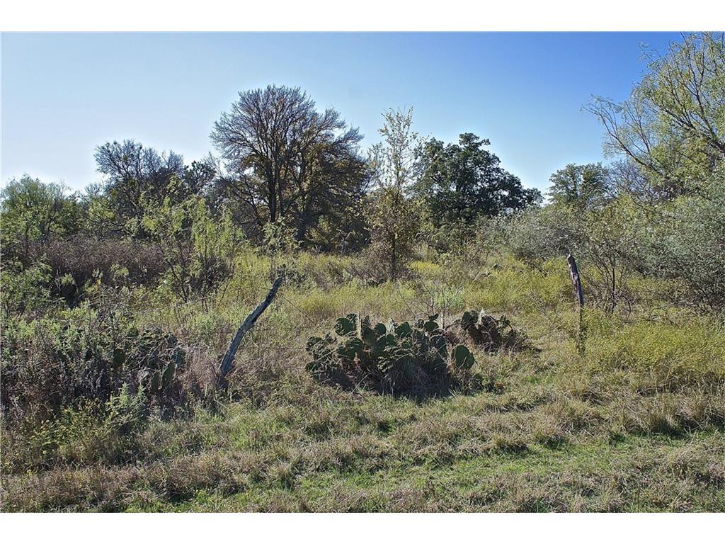 Lot 6 - CR 135 (100 acres), Bangs, Texas 76823