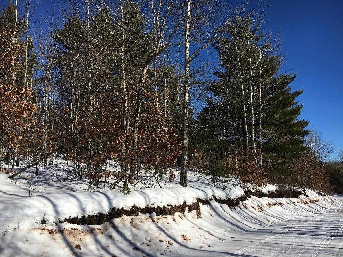 NE,NW Pine Lake Road, Iron River, Wisconsin 54847