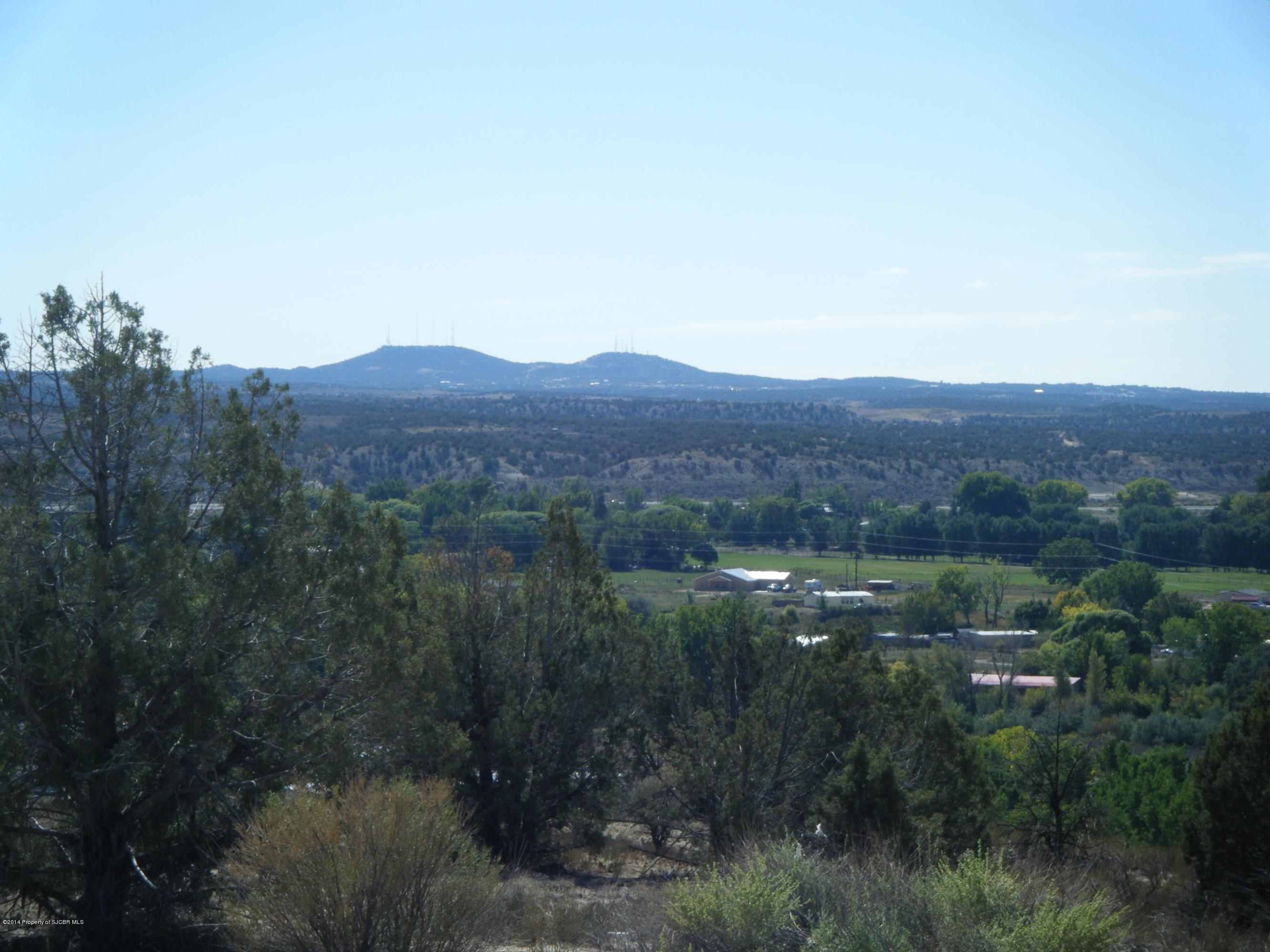 Lot 1B Road 26340, Aztec, New Mexico 87410