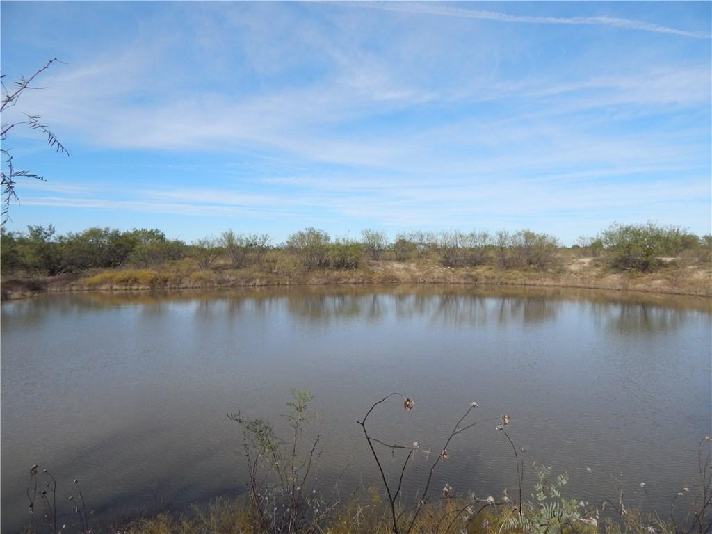 141 Acres on CR 412, Carbon, Texas 76435