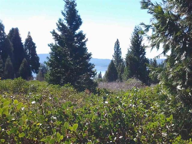 3294 Cedar Lane, Lake Almanor, California 96137