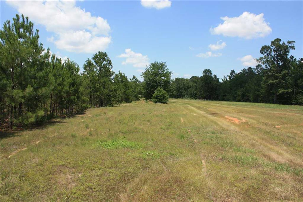 TBD Phillips Lane, Texarkana, Arkansas 71854