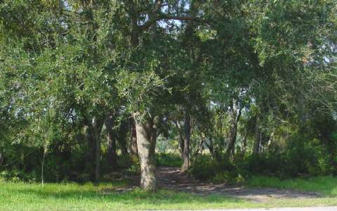 Lot 8 Marsh Lakes Drive, Fernandina Beach, Florida 32034