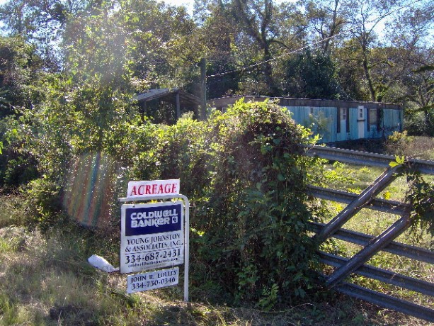 7.5 Acres County Road 47, Midway, Alabama 36053
