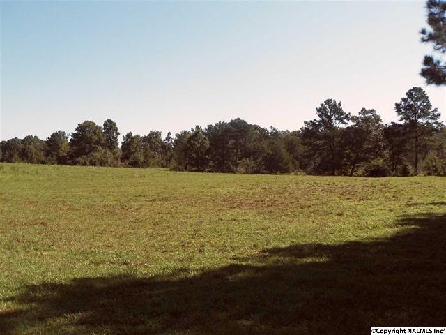County Road 240, Moulton, Alabama 35650