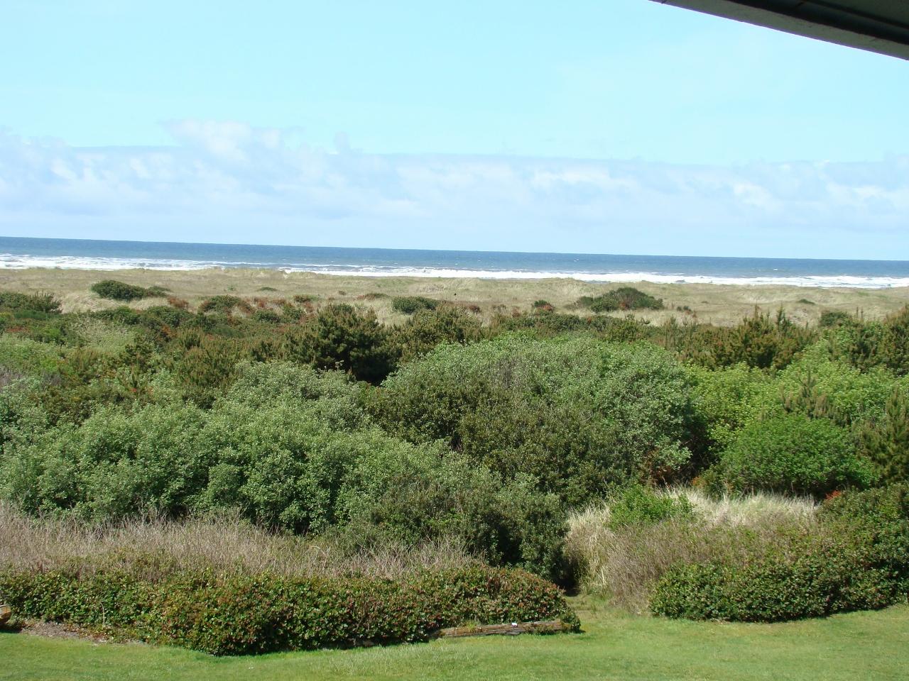651 Ocean Shores Blvd NW, #308, Ocean Shores, Washington 98569