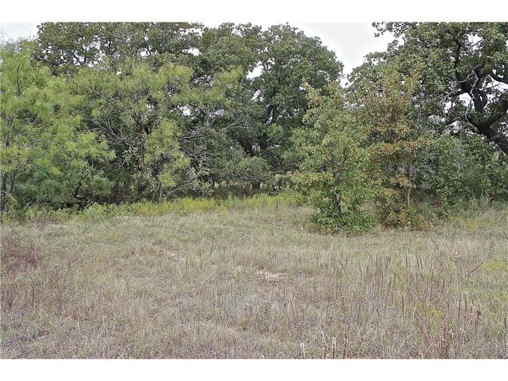 Lot 2 - Hwy 67 (100 acres), Bangs, Texas 76823