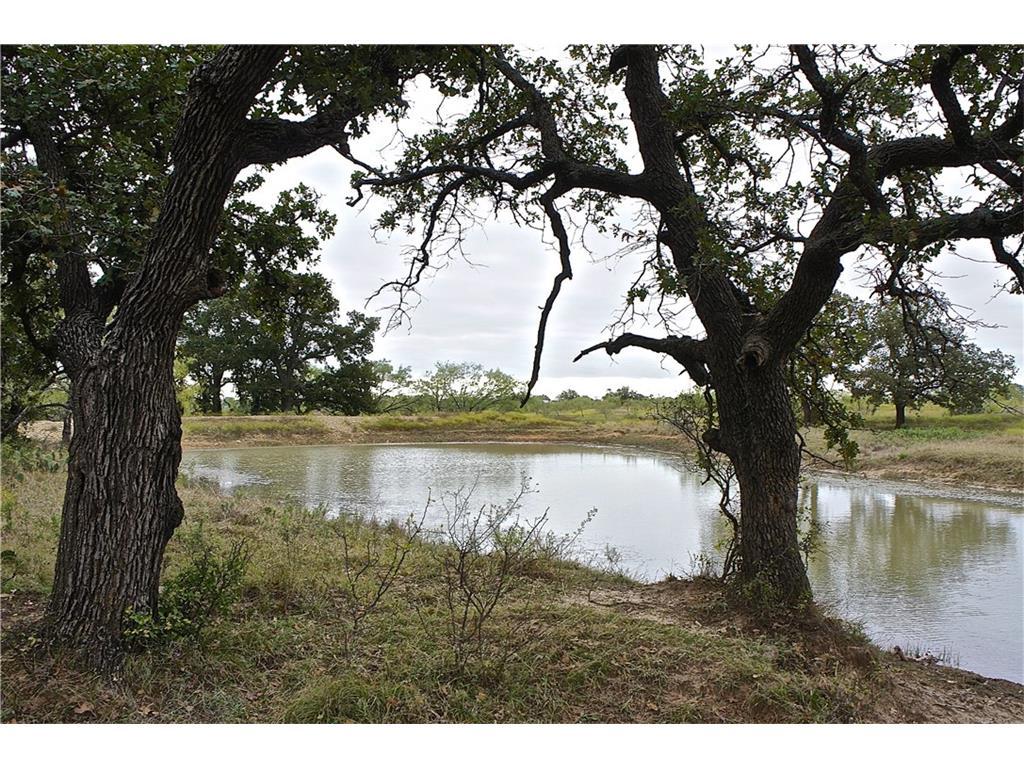 Lot 3 - Hwy 67 (100 acres), Bangs, Texas 76823