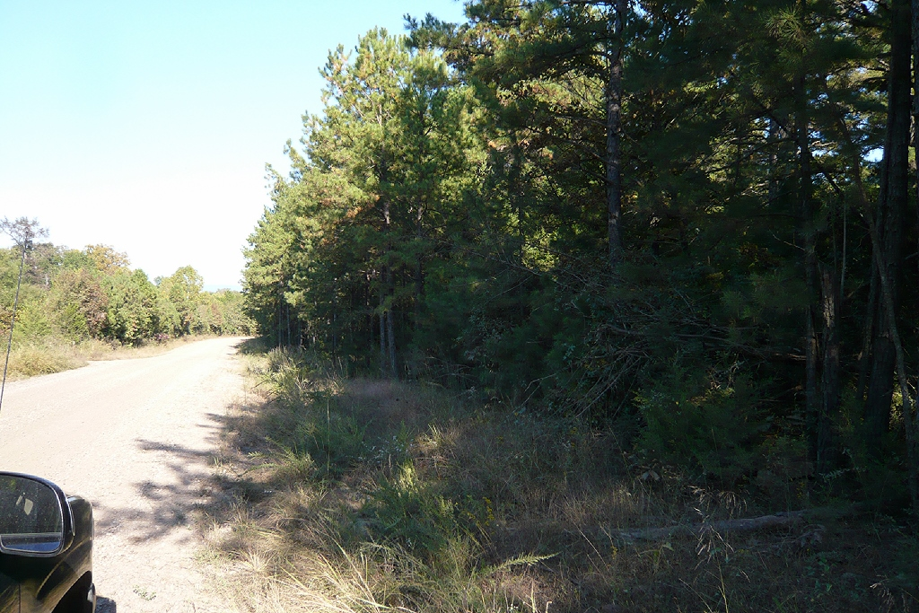 Dogwood Rd., Ozark, Arkansas 72949