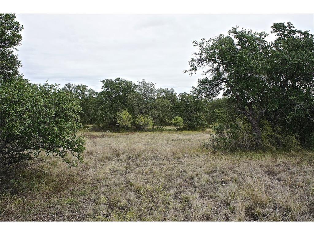 Lot 4 - CR 152 (100 acres), Bangs, Texas 76823