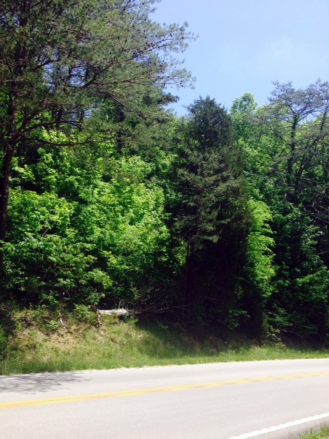 12 Acres Hwy 192, Somerset, Kentucky 42503