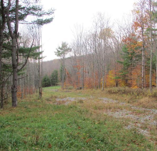 0 Silver Creek Road, Montrose, Pennsylvania 18801