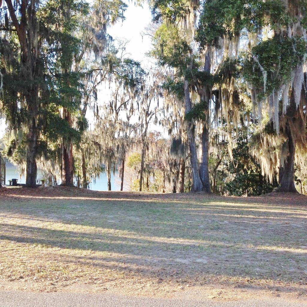 5042 Hammock Trail, Lake Park, Georgia 31636